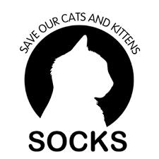 Cats & Socks